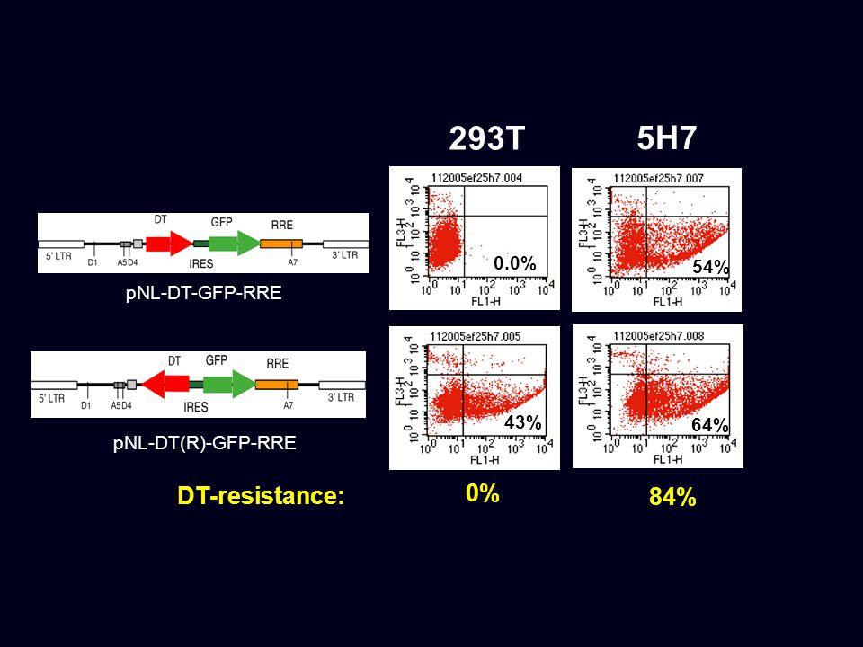 293T 5H7 pNL-DT-GFP-RRE pNL-DT(R)-GFP-RRE 0.0% 54% 64% 43% 0% DT-resistance: 84%