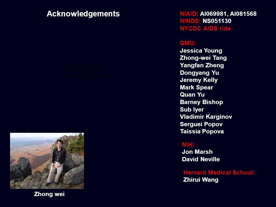 Acknowledgements NIAID: AI069981, AI081568 NINDS: NS051130 NYCDC AIDS ride GMU: Jessica Young Zhong-wei Tang Yangfan Zheng Dongyang Yu Jeremy Kelly Ma