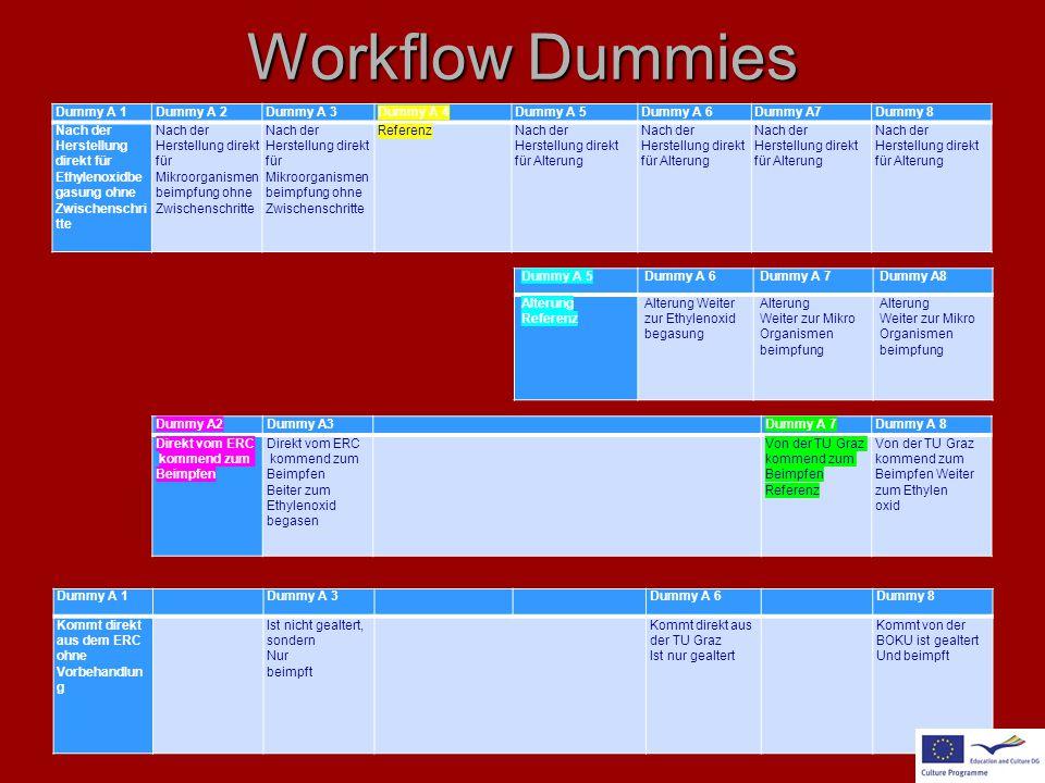 Workflow Dummies Dummy A 1Dummy A 2Dummy A 3Dummy A 4Dummy A 5Dummy A 6Dummy A7Dummy 8 Nach der Herstellung direkt für Ethylenoxidbe gasung ohne Zwisc