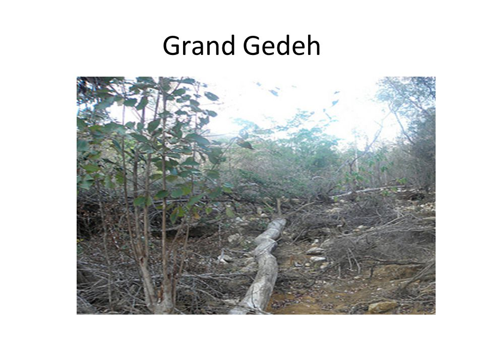 Grand Gedeh