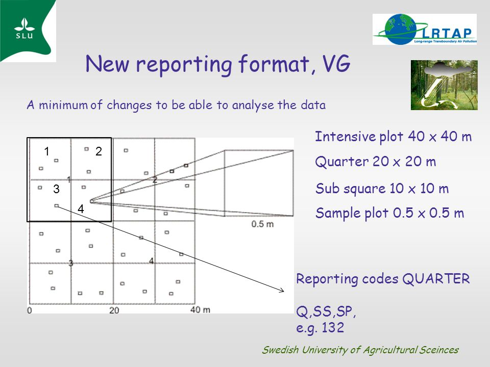 New reporting format, VG A minimum of changes to be able to analyse the data 12 3 4 Intensive plot 40 x 40 m Quarter 20 x 20 m Sample plot 0.5 x 0.5 m
