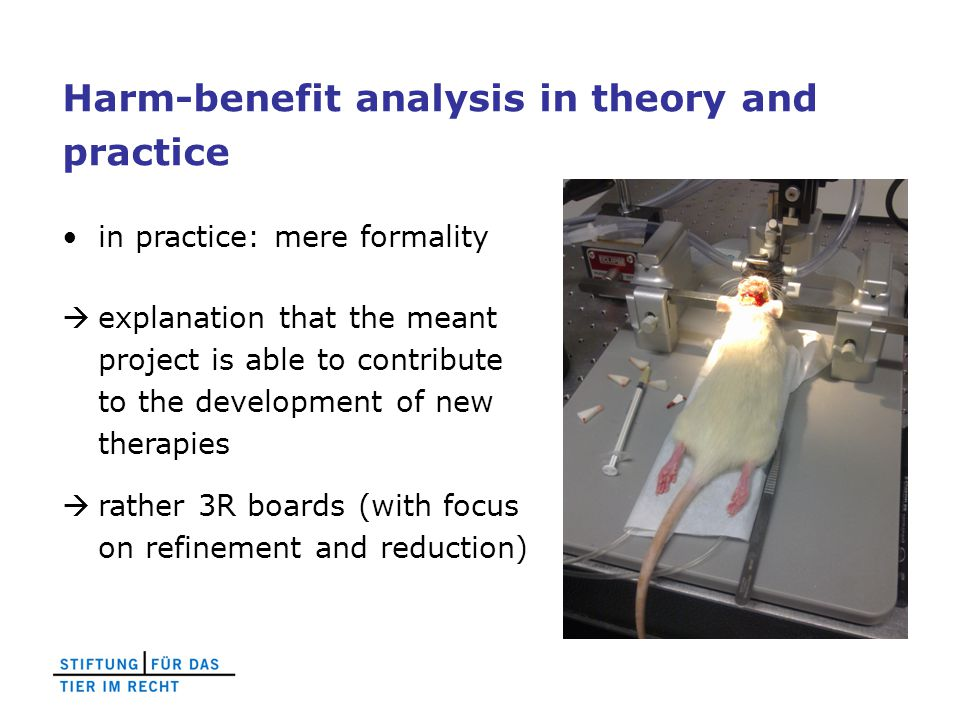 Harm-benefit analysis in theory and practice in practice: mere formality  explanation that the meant project is able to contribute to the development of new therapies  rather 3R boards (with focus on refinement and reduction)