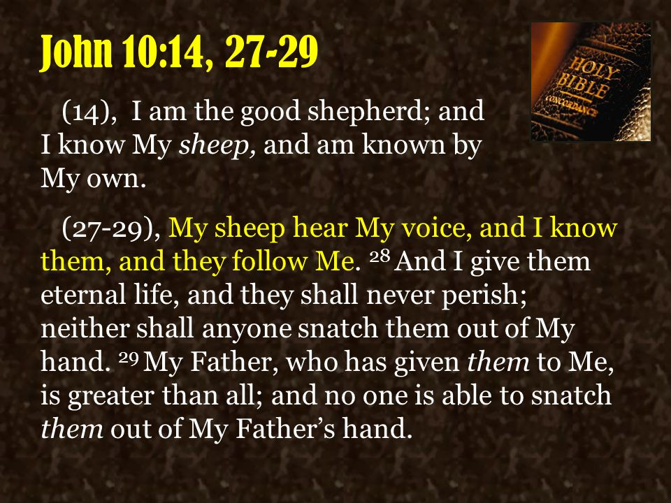 John 10:14, 27-29 (14), I am the good shepherd; and I know My sheep, and am known by My own. (27-29), My sheep hear My voice, and I know them, and the