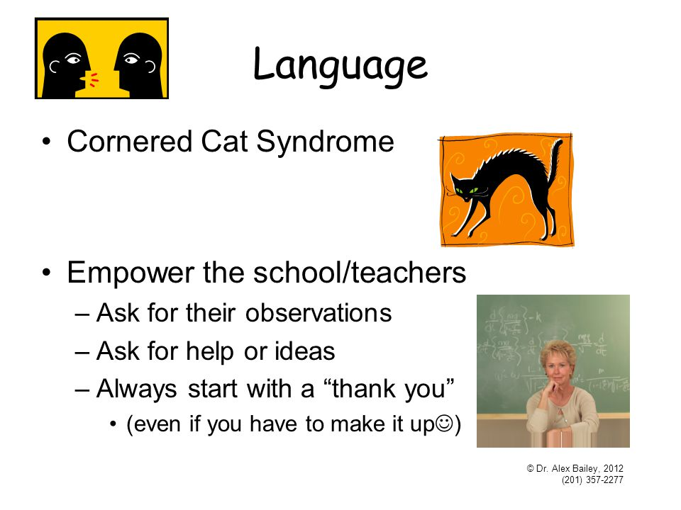 Language Cornered Cat Syndrome Empower the school/teachers –Ask for their observations –Ask for help or ideas –Always start with a thank you (even if you have to make it up ) © Dr.