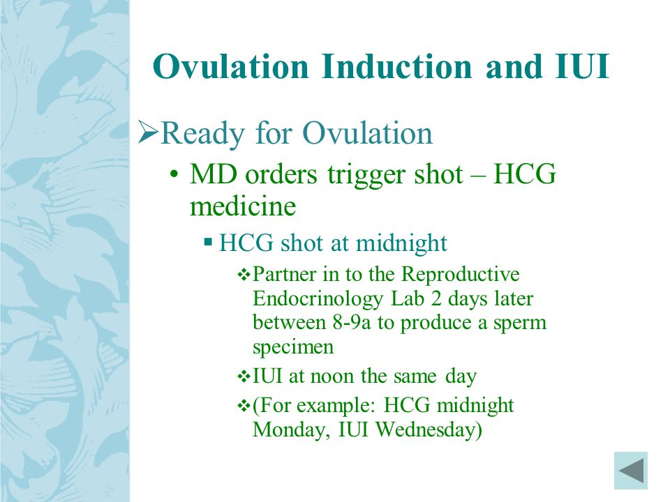 Ovulation Induction and IUI  Ready for Ovulation MD orders trigger shot – HCG medicine  HCG shot at midnight  Partner in to the Reproductive Endocrinology Lab 2 days later between 8-9a to produce a sperm specimen  IUI at noon the same day  (For example: HCG midnight Monday, IUI Wednesday)