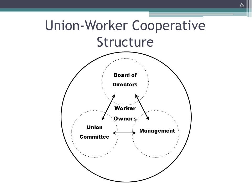Union-Worker Cooperative Structure 6 Board of Directors Union Committee Management Worker Owners