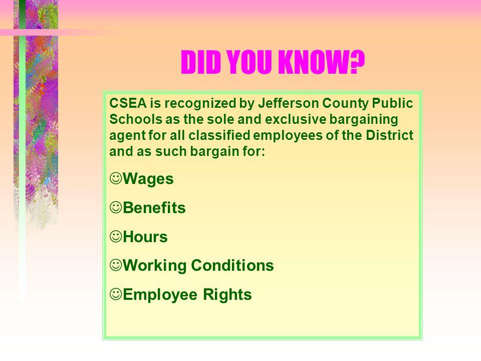 WHY C.S.E.A.