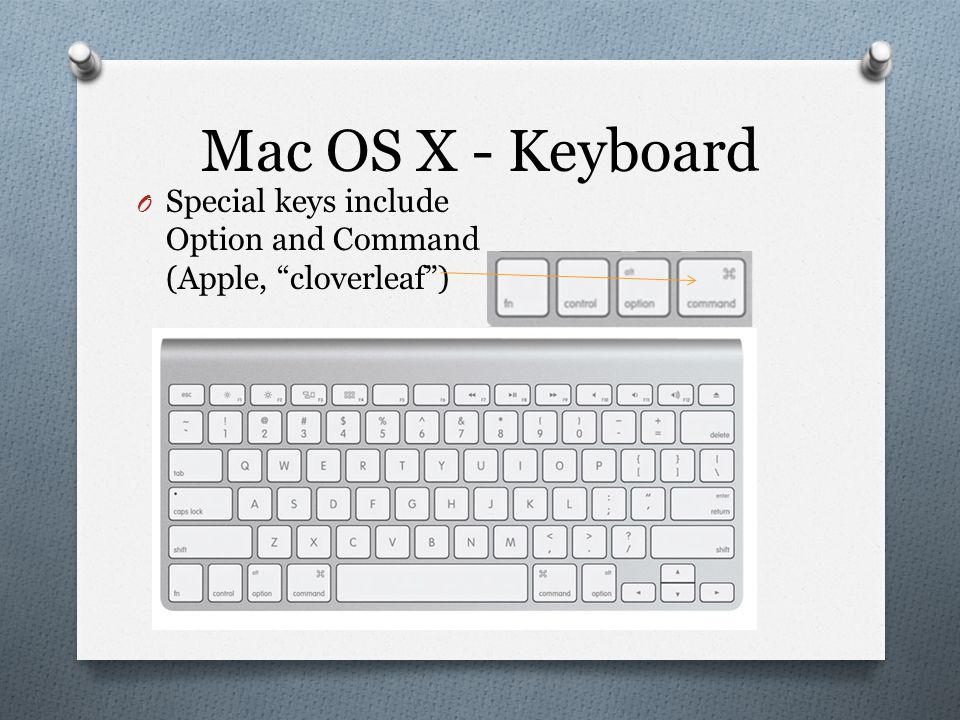 Mac OS X - Keyboard O Special keys include Option and Command (Apple, cloverleaf )