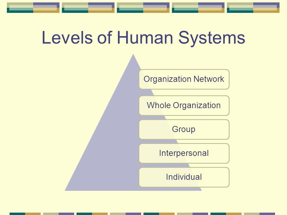 Levels of Human Systems
