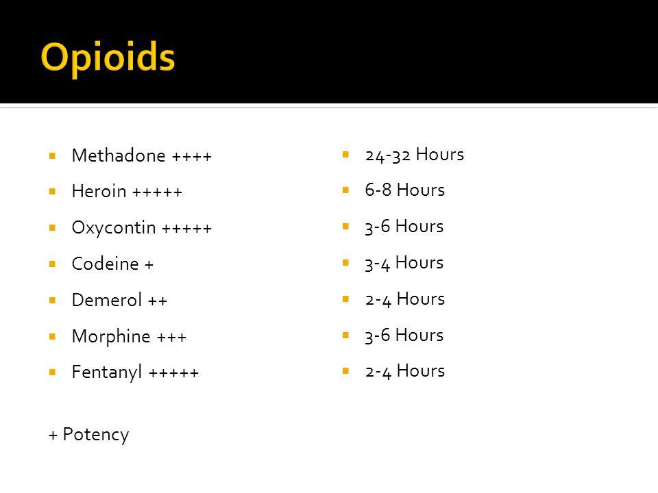  Methadone ++++  Heroin +++++  Oxycontin +++++  Codeine +  Demerol ++  Morphine +++  Fentanyl +++++ + Potency  24-32 Hours  6-8 Hours  3-6 H