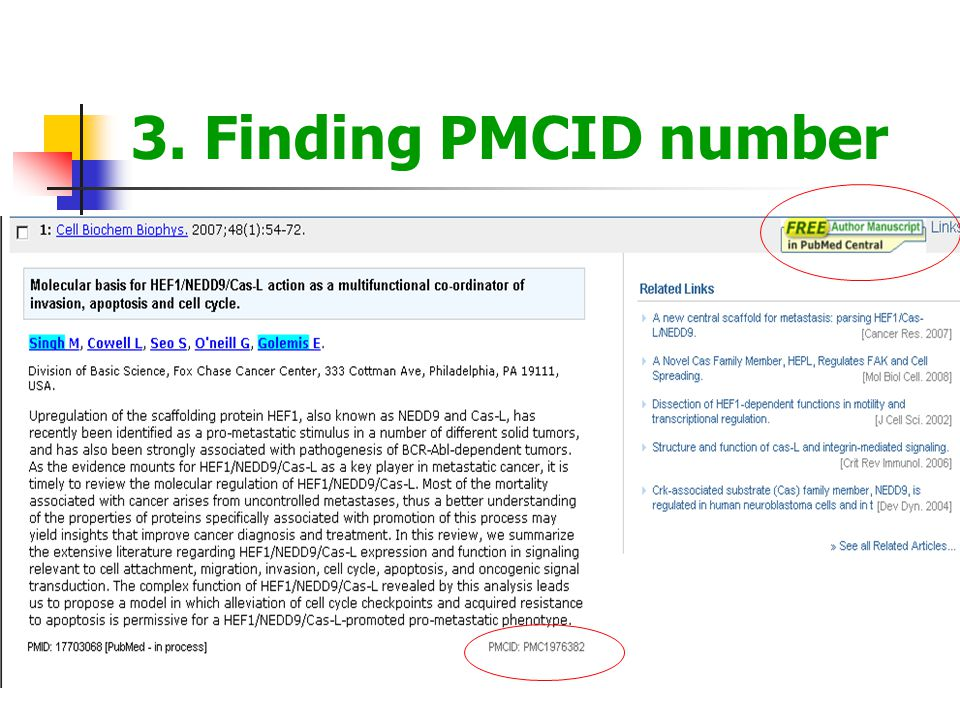 3. Finding PMCID number