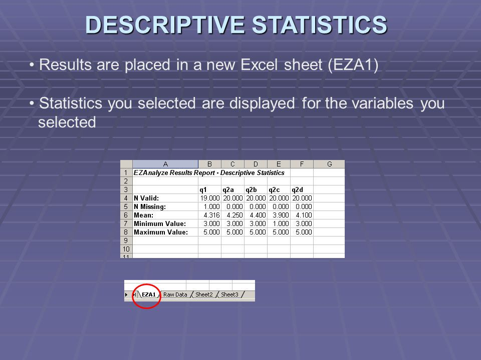 Results are placed in a new Excel sheet (EZA1) Statistics you selected are displayed for the variables you selected DESCRIPTIVE STATISTICS