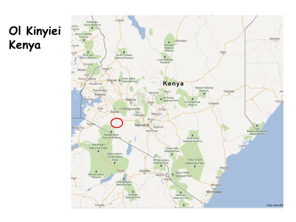 Ol Kinyiei Kenya