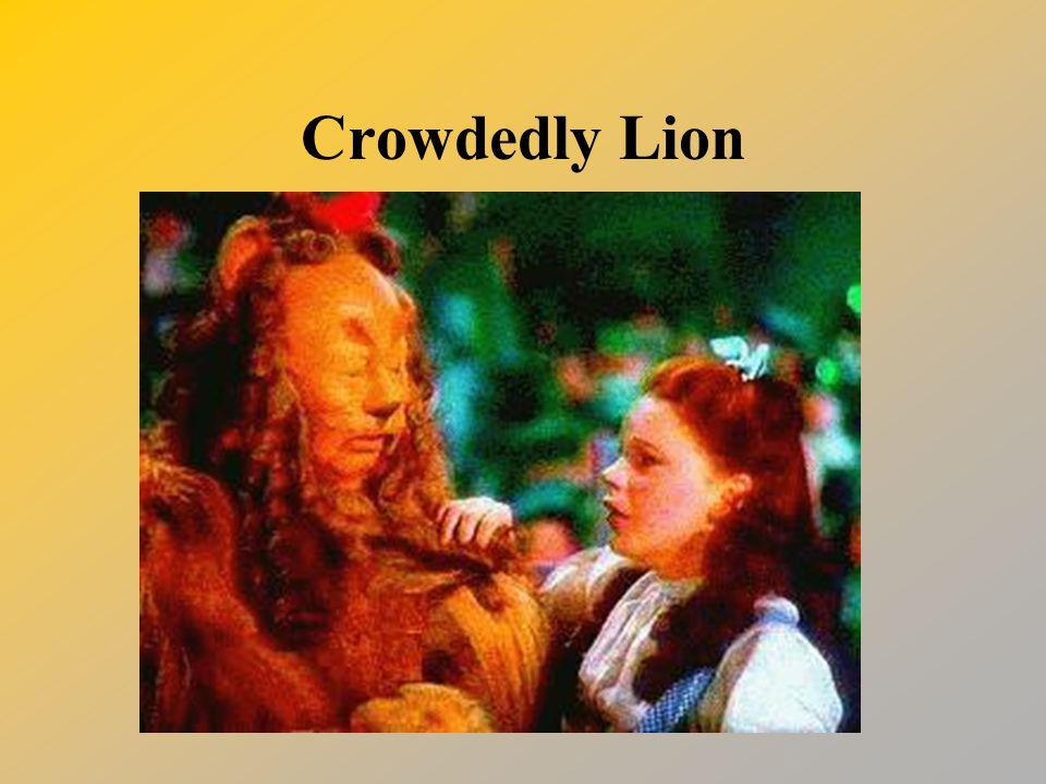 Crowdedly Lion