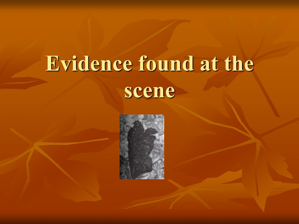 Evidence Submitted to Court: Crime Scene Hairs and Fibers Hairs found in a dark knit cap were similar to Simpson s hairs Hairs found in a dark knit cap were similar to Simpson s hairs Fibers on a cap were similar to those in the carpeting of Simpson s Ford Bronco Fibers on a cap were similar to those in the carpeting of Simpson s Ford Bronco Dark blue cotton fibers were found on Goldman.