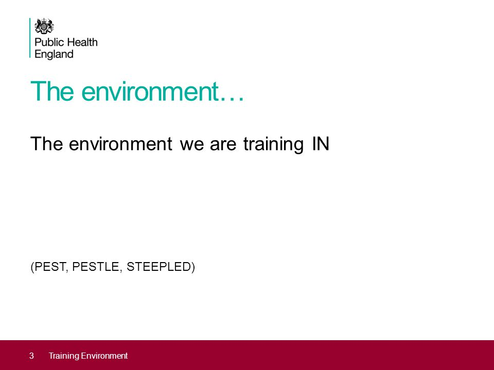 The environment… The environment we are training IN (PEST, PESTLE, STEEPLED) 3Training Environment
