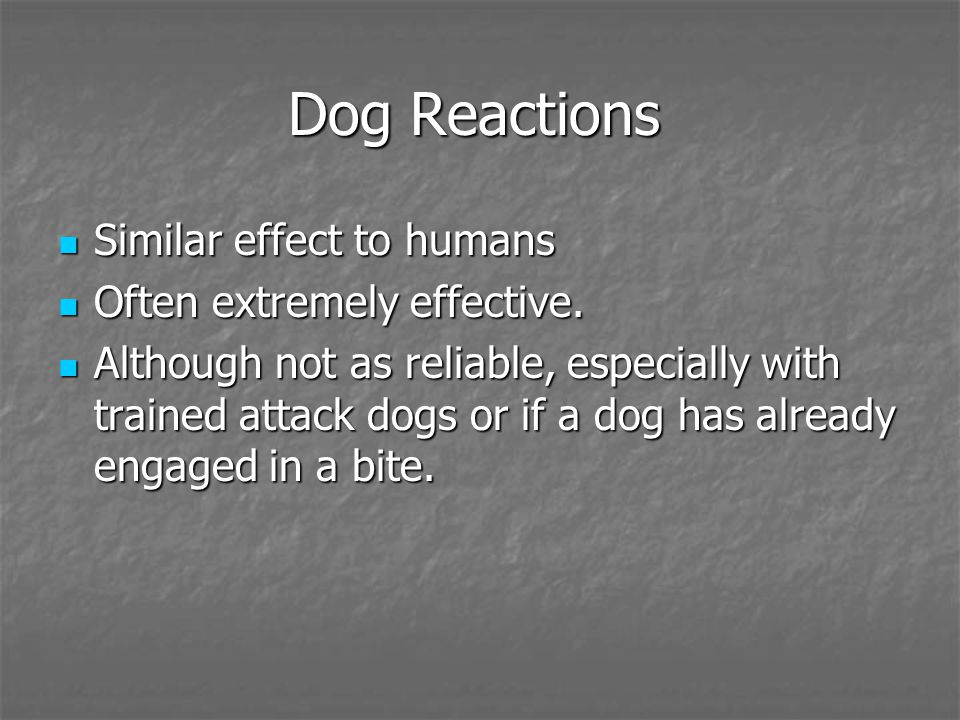 Dog Reactions Similar effect to humans Similar effect to humans Often extremely effective. Often extremely effective. Although not as reliable, especi