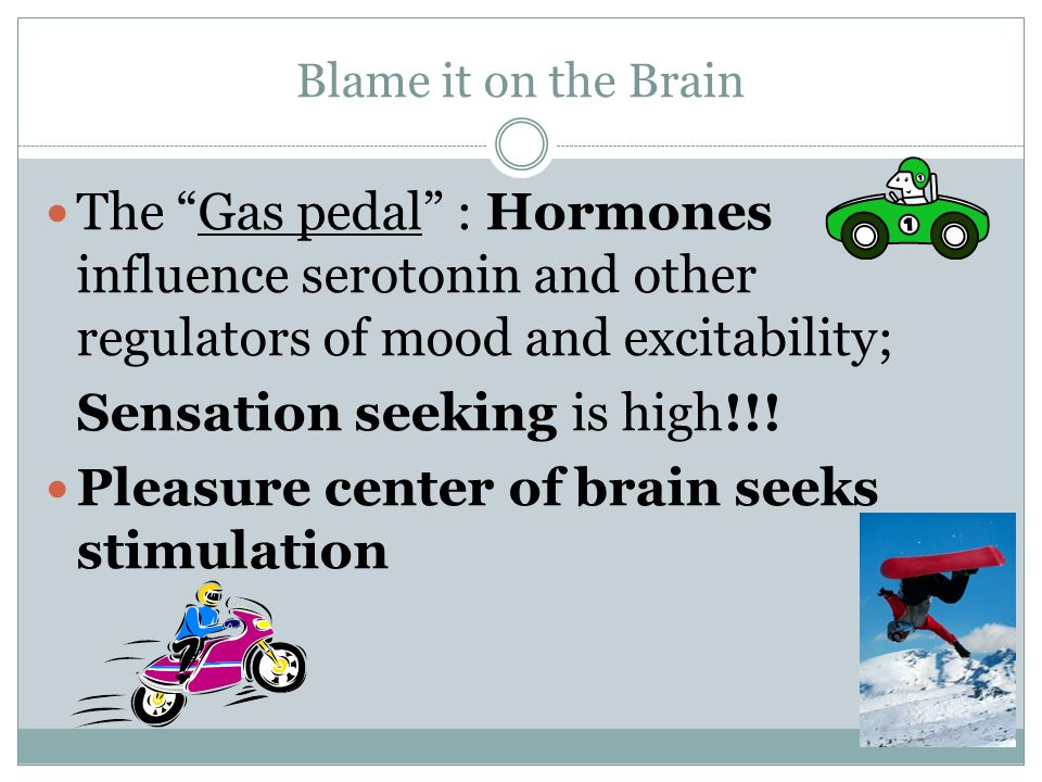 """Blame it on the Brain The """"Gas pedal"""" : Hormones influence serotonin and other regulators of mood and excitability; Sensation seeking is high!!! Pleas"""