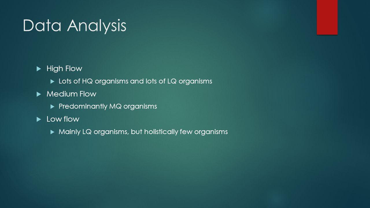 Data Analysis  High Flow  Lots of HQ organisms and lots of LQ organisms  Medium Flow  Predominantly MQ organisms  Low flow  Mainly LQ organisms, but holistically few organisms