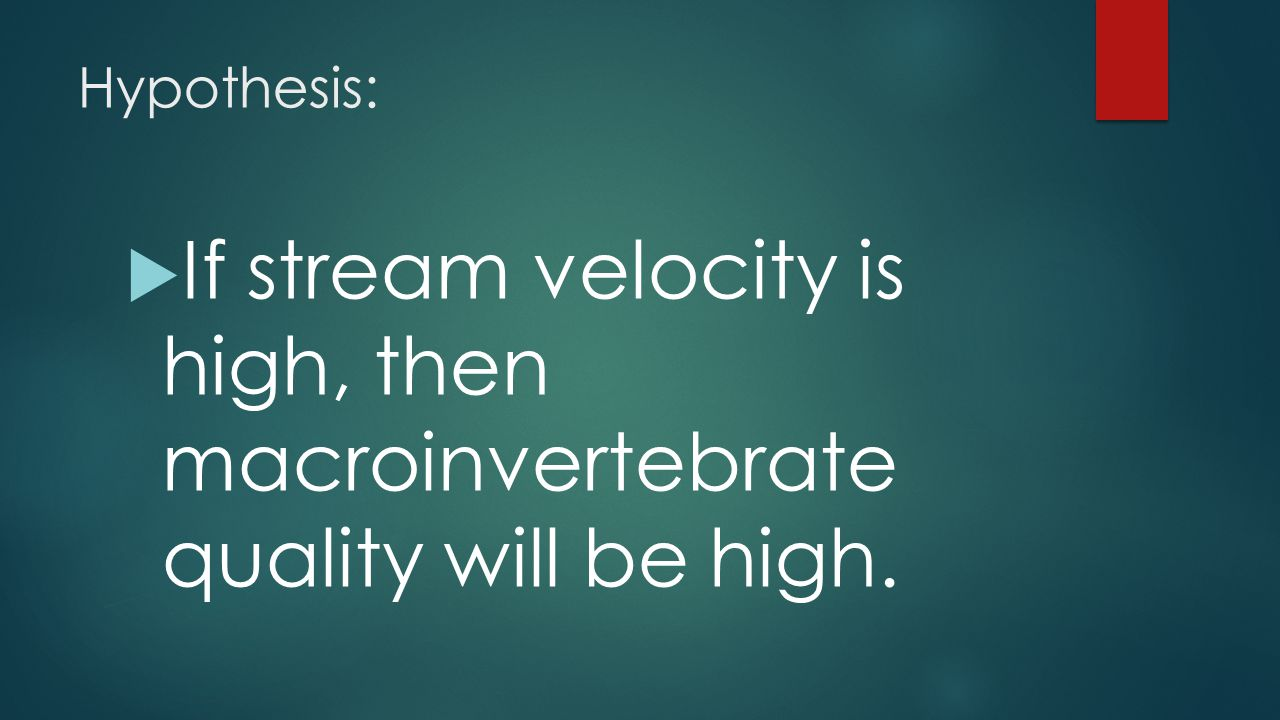 Hypothesis:  If stream velocity is high, then macroinvertebrate quality will be high.