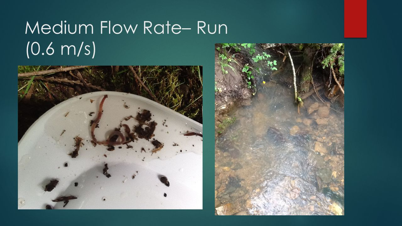 Medium Flow Rate– Run (0.6 m/s)