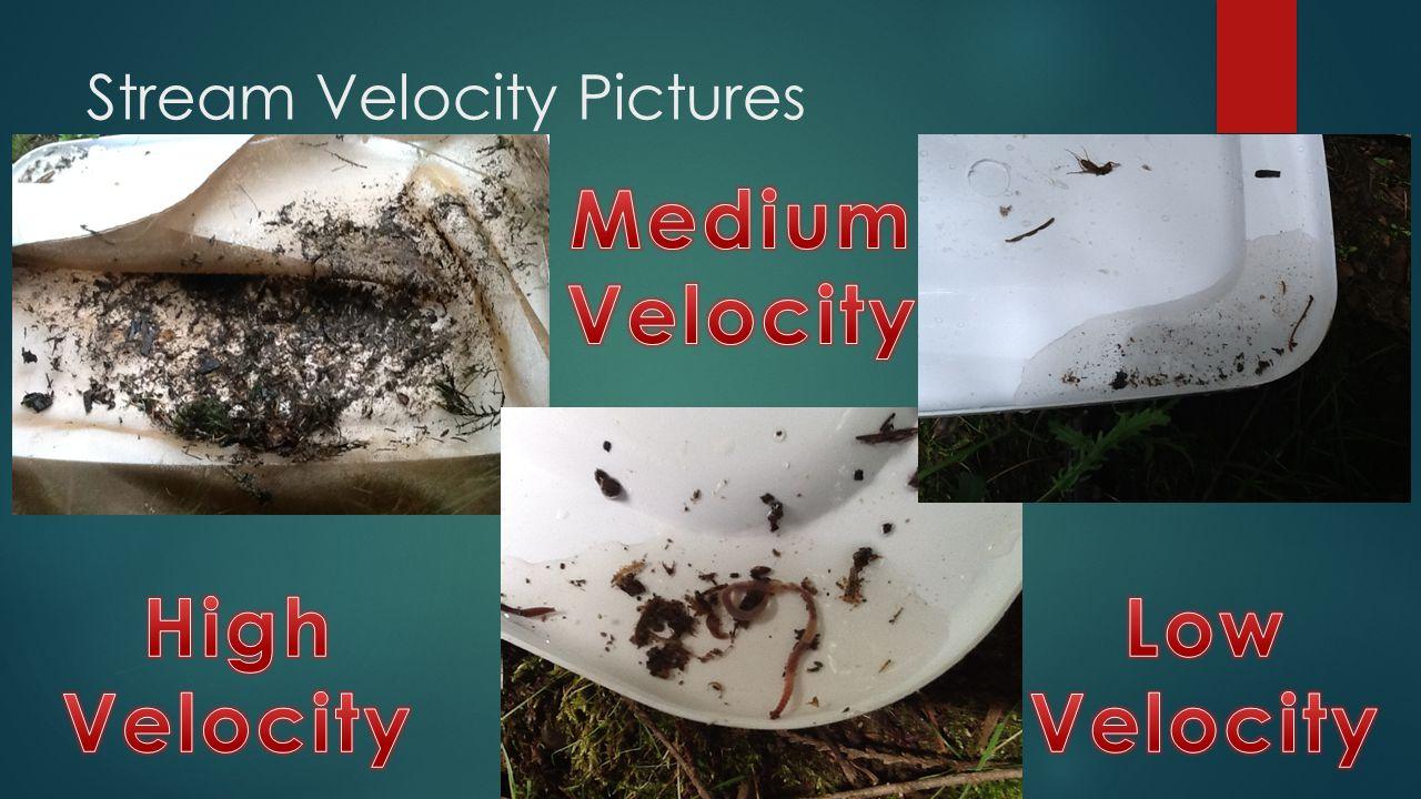 Stream Velocity Pictures