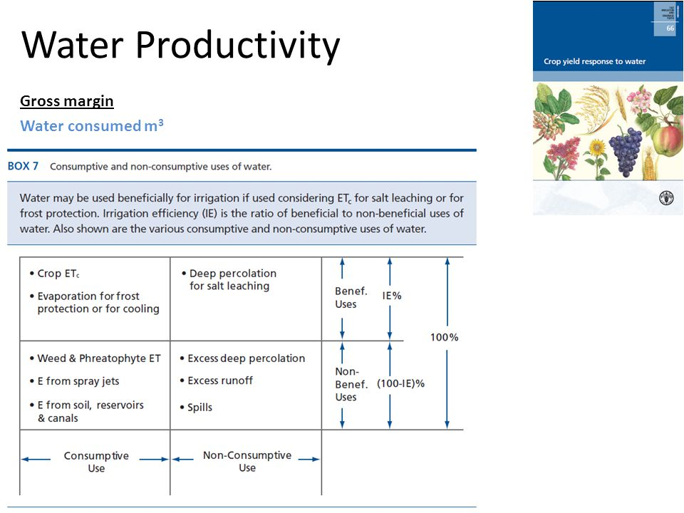 Water Productivity Gross margin Water consumed m 3