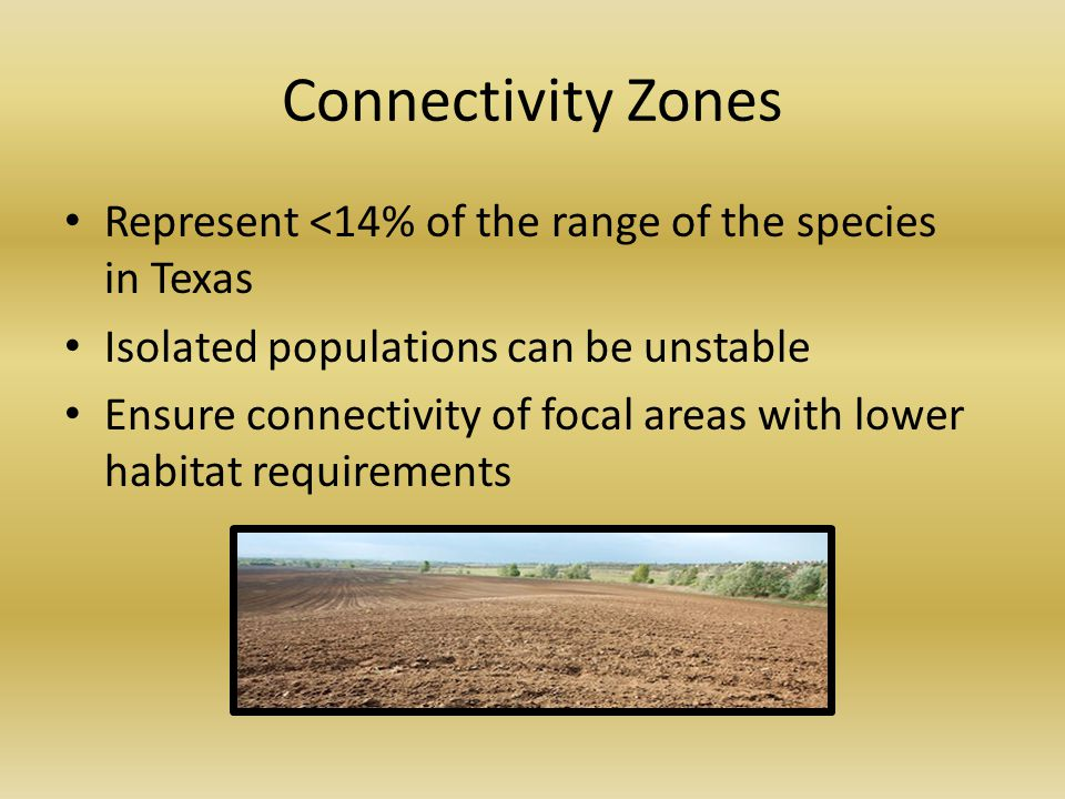 Connectivity Zones Represent <14% of the range of the species in Texas Isolated populations can be unstable Ensure connectivity of focal areas with lower habitat requirements