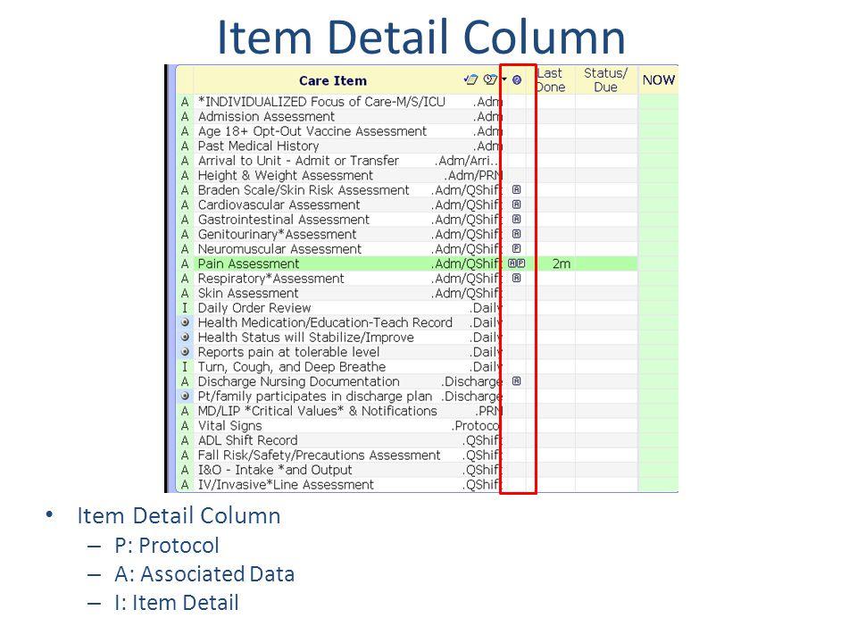 Item Detail Column – P: Protocol – A: Associated Data – I: Item Detail