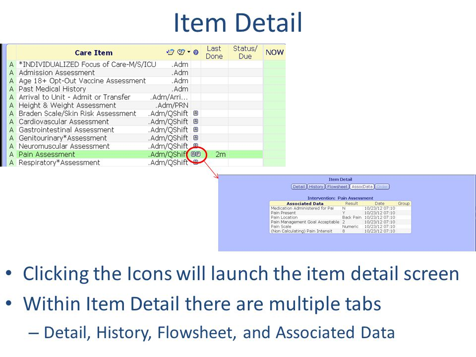 Item Detail Clicking the Icons will launch the item detail screen Within Item Detail there are multiple tabs – Detail, History, Flowsheet, and Associa