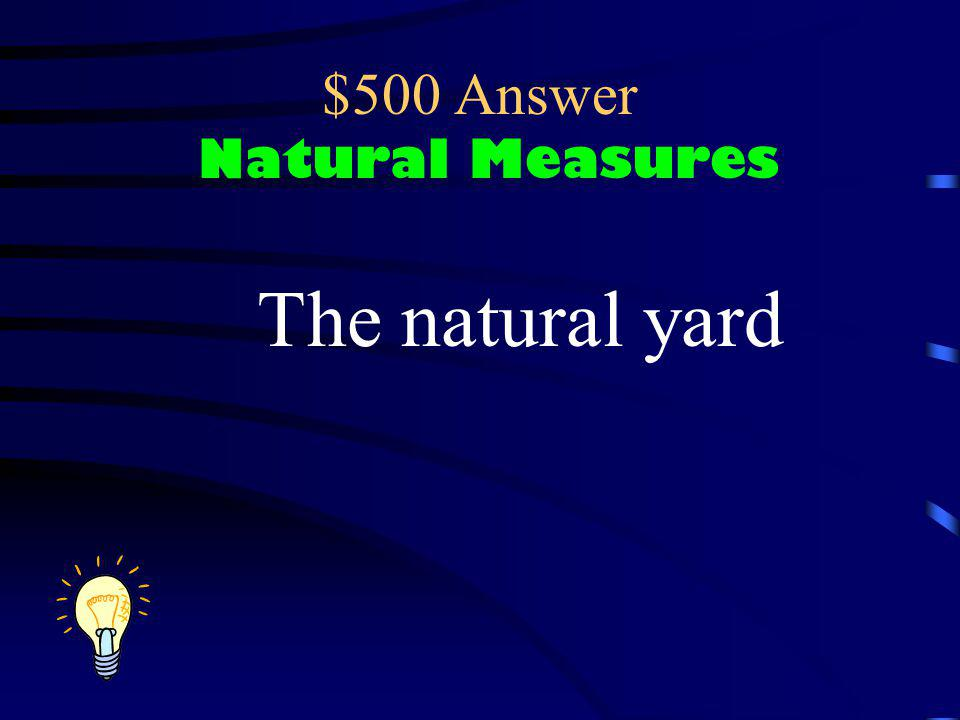 $500 Question Natural Measures What natural measure is shown here and about how long should it be?