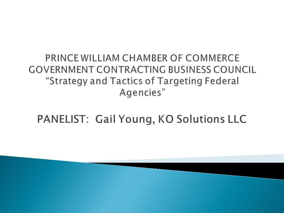PANELIST: Gail Young, KO Solutions LLC