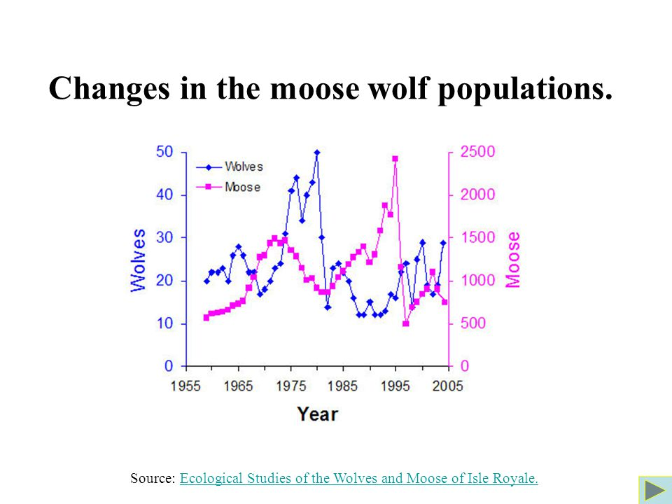 Changes in the moose wolf populations.