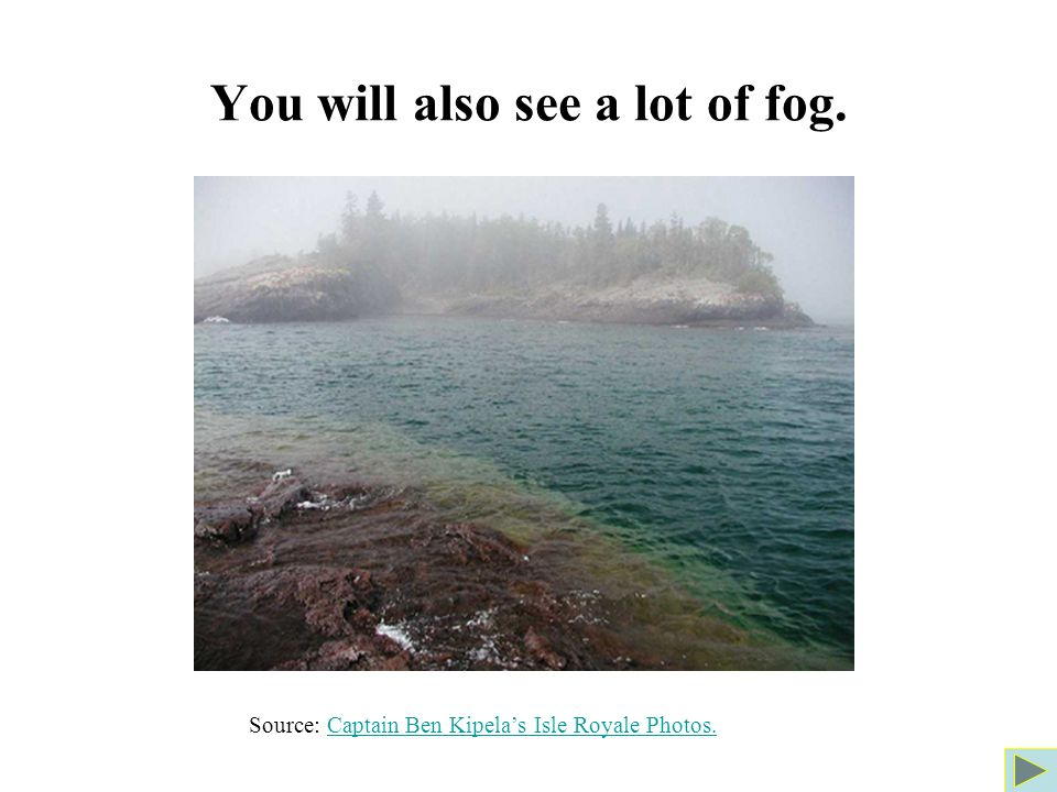 You will also see a lot of fog.