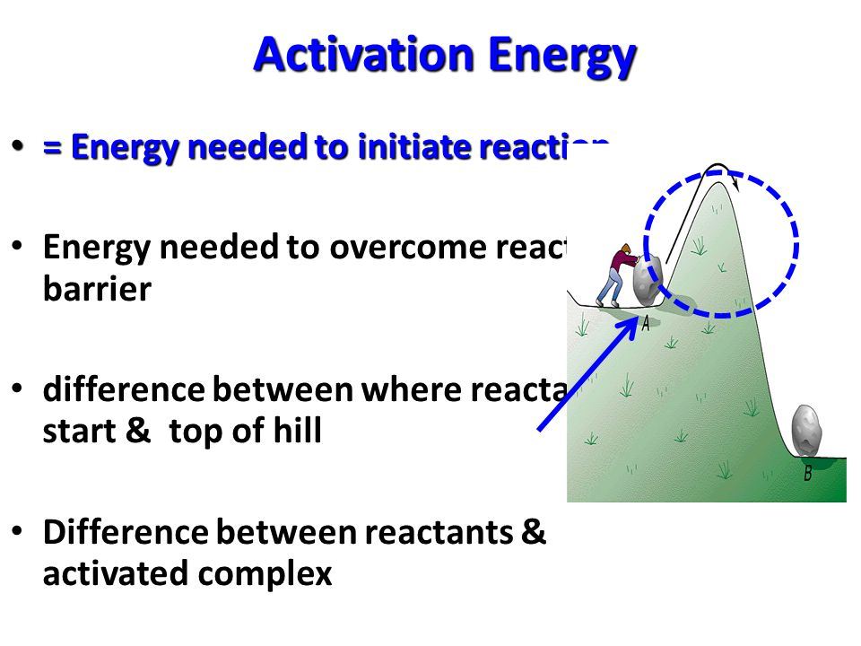 Activation Energy = Energy needed to initiate reaction = Energy needed to initiate reaction Energy needed to overcome reaction barrier difference between where reactants start & top of hill Difference between reactants & activated complex