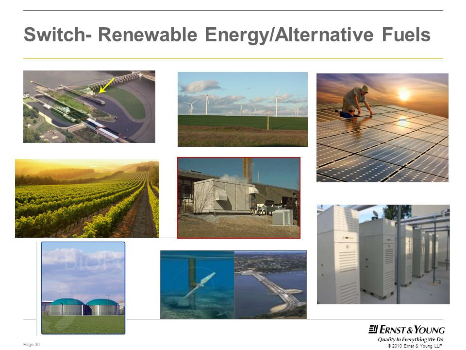 Page 30 © 2010 Ernst & Young LLP Switch- Renewable Energy/Alternative Fuels Farm Picture