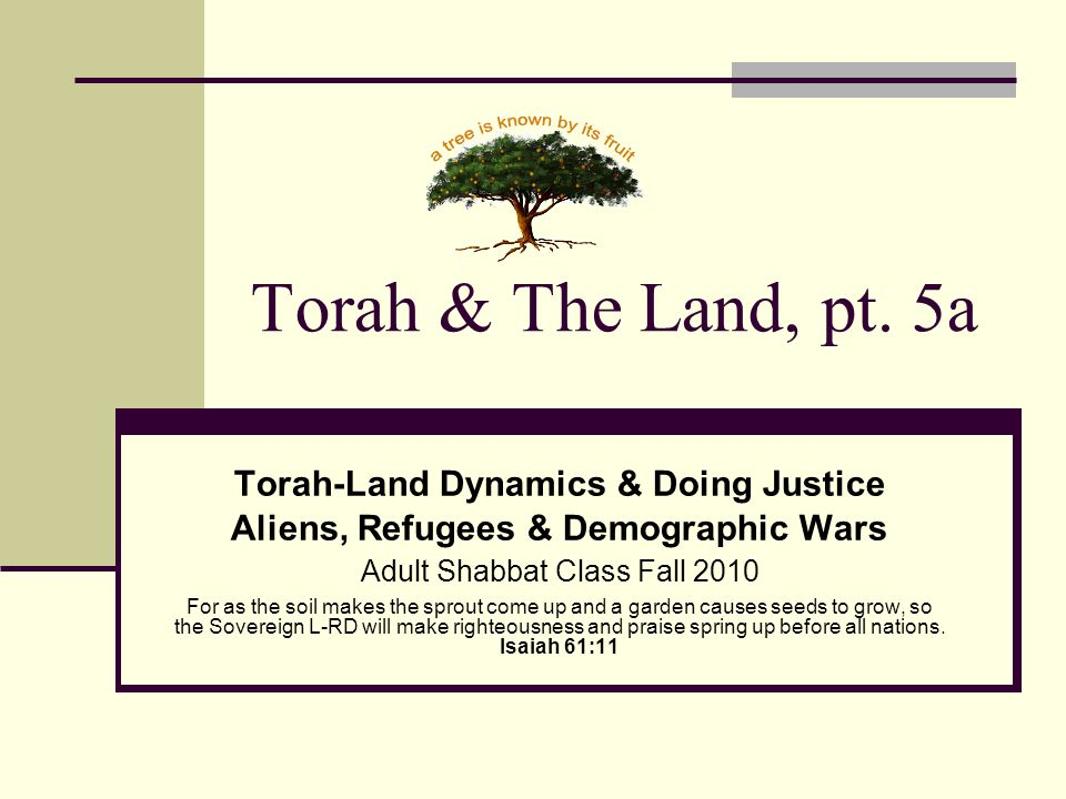Torah & The Land, pt. 5a Torah-Land Dynamics & Doing Justice Aliens, Refugees & Demographic Wars Adult Shabbat Class Fall 2010 For as the soil makes t