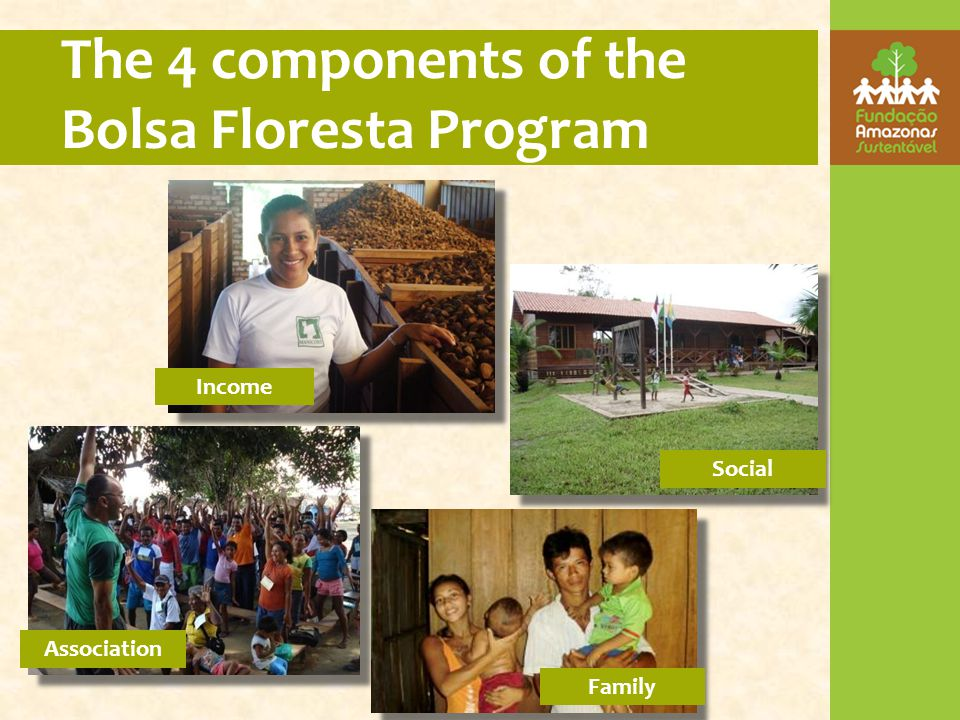 The 4 components of the Bolsa Floresta Program Income Association Social Family