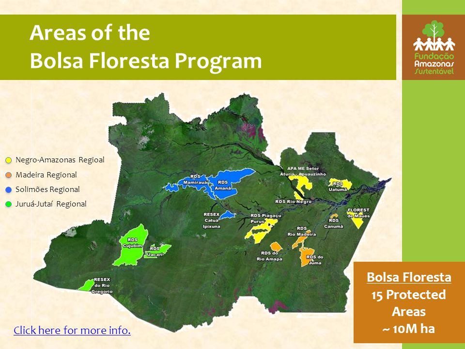 Areas of the Bolsa Floresta Program Bolsa Floresta 15 Protected Areas ~ 10M ha Negro-Amazonas Regioal Madeira Regional Solimões Regional Juruá-Jutaí Regional Click here for more info.