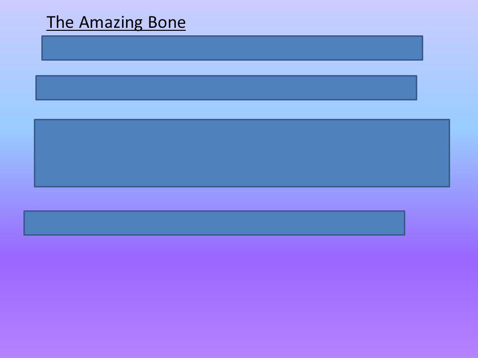 The Amazing Bone Describe the amazing things the bone could do.