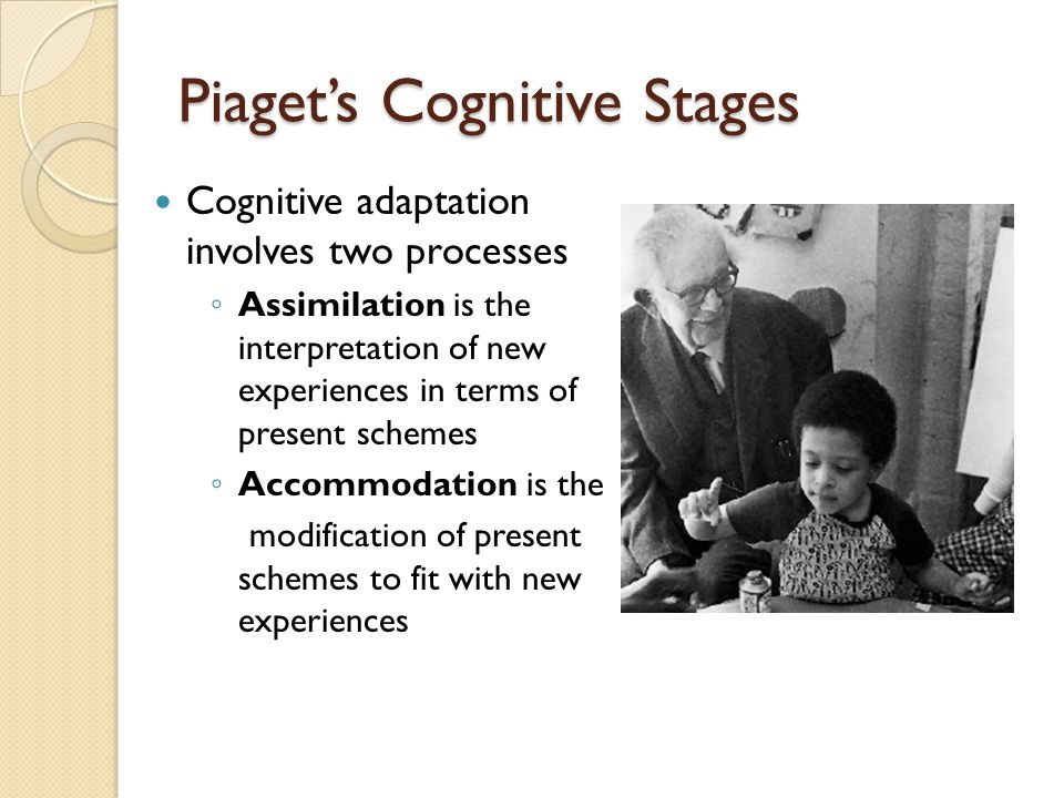 Piaget's Cognitive Stages Cognitive adaptation involves two processes ◦ Assimilation is the interpretation of new experiences in terms of present sche