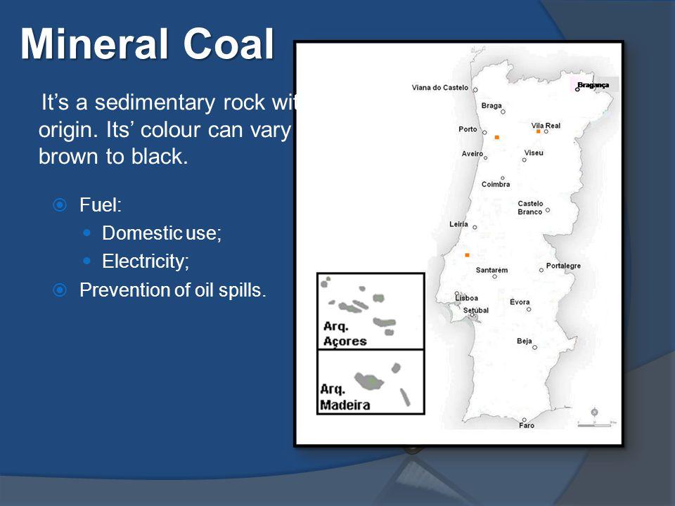 Mineral Coal It's a sedimentary rock with a biogenic origin.