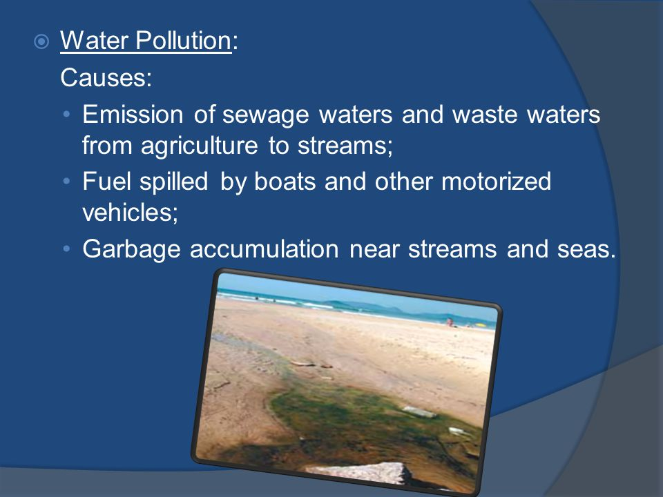 Water Pollution: Causes: Emission of sewage waters and waste waters from agriculture to streams; Fuel spilled by boats and other motorized vehicles; Garbage accumulation near streams and seas.