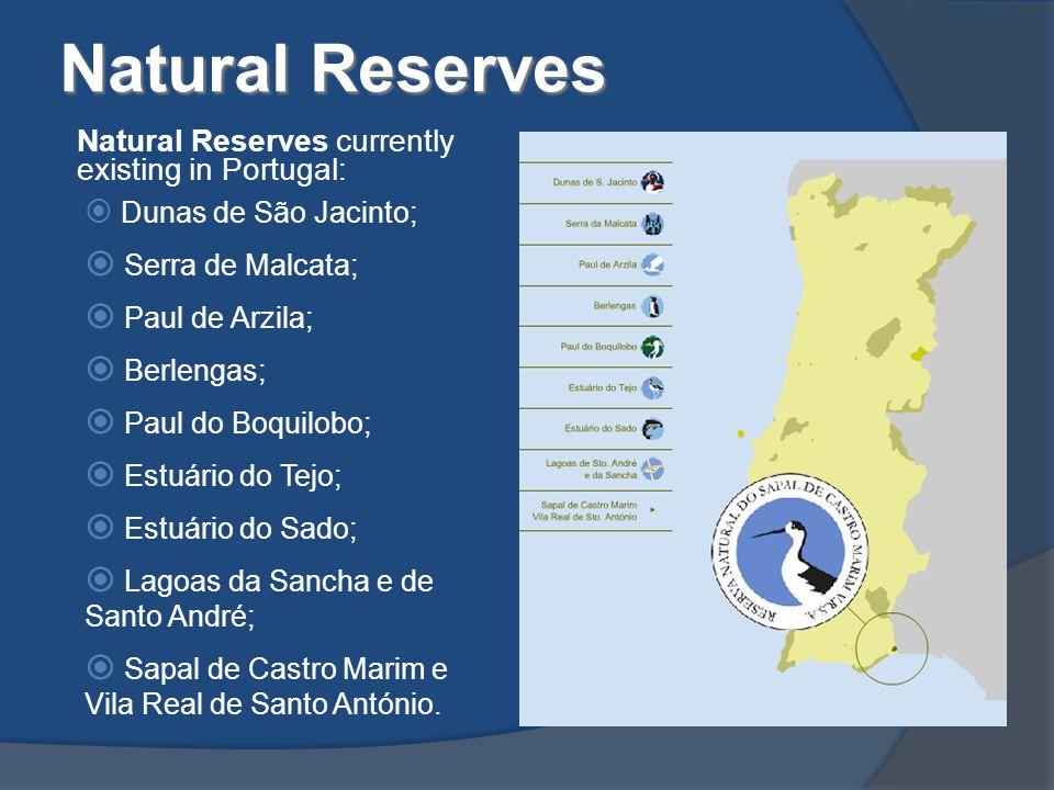 Natural Reserves Natural Reserves currently existing in Portugal:  Dunas de São Jacinto;  Serra de Malcata;  Paul de Arzila;  Berlengas;  Paul do Boquilobo;  Estuário do Tejo;  Estuário do Sado;  Lagoas da Sancha e de Santo André;  Sapal de Castro Marim e Vila Real de Santo António.