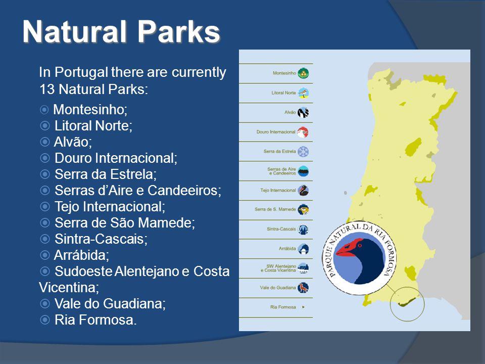 Natural Parks In Portugal there are currently 13 Natural Parks:  Montesinho;  Litoral Norte;  Alvão;  Douro Internacional;  Serra da Estrela;  Serras d'Aire e Candeeiros;  Tejo Internacional;  Serra de São Mamede;  Sintra-Cascais;  Arrábida;  Sudoeste Alentejano e Costa Vicentina;  Vale do Guadiana;  Ria Formosa.