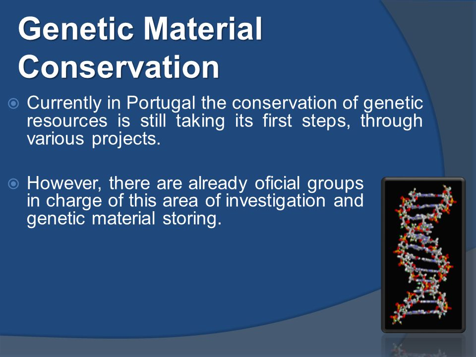 Currently in Portugal the conservation of genetic resources is still taking its first steps, through various projects.