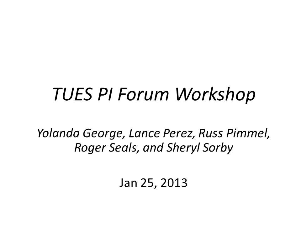 TUES PI Forum Workshop Yolanda George, Lance Perez, Russ Pimmel, Roger Seals, and Sheryl Sorby Jan 25, 2013