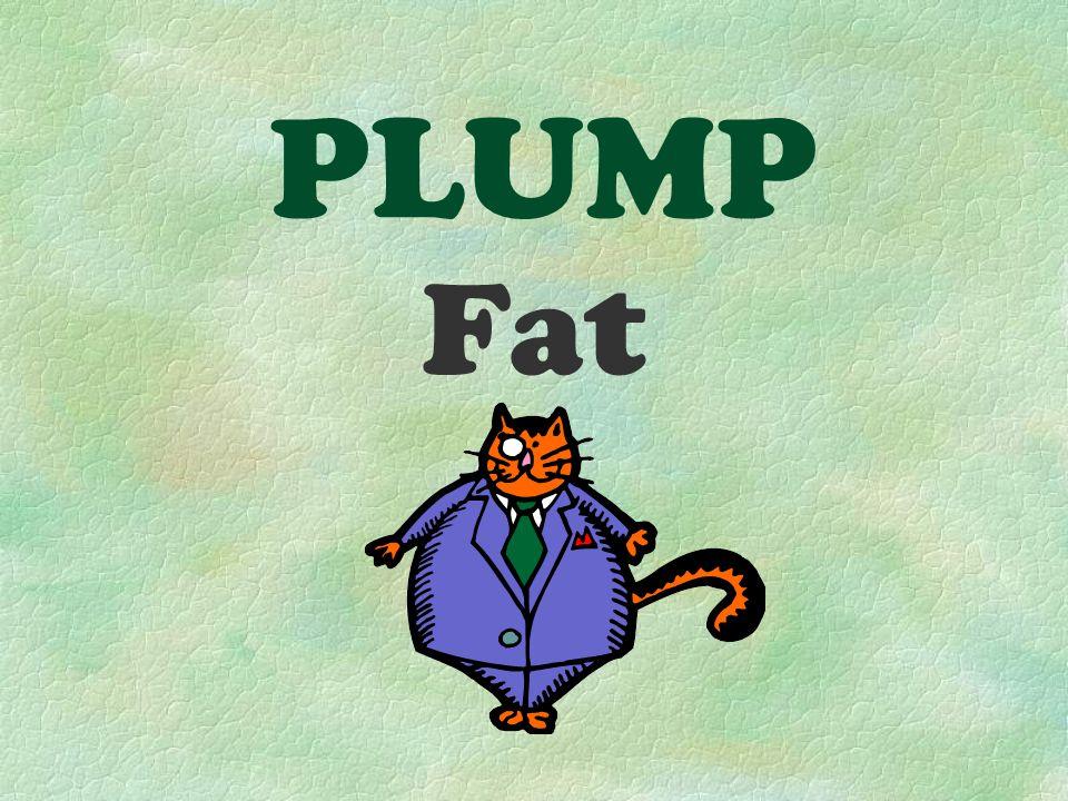 PLUMP Fat