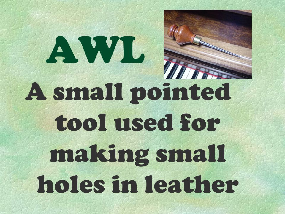 AWL A small pointed tool used for making small holes in leather