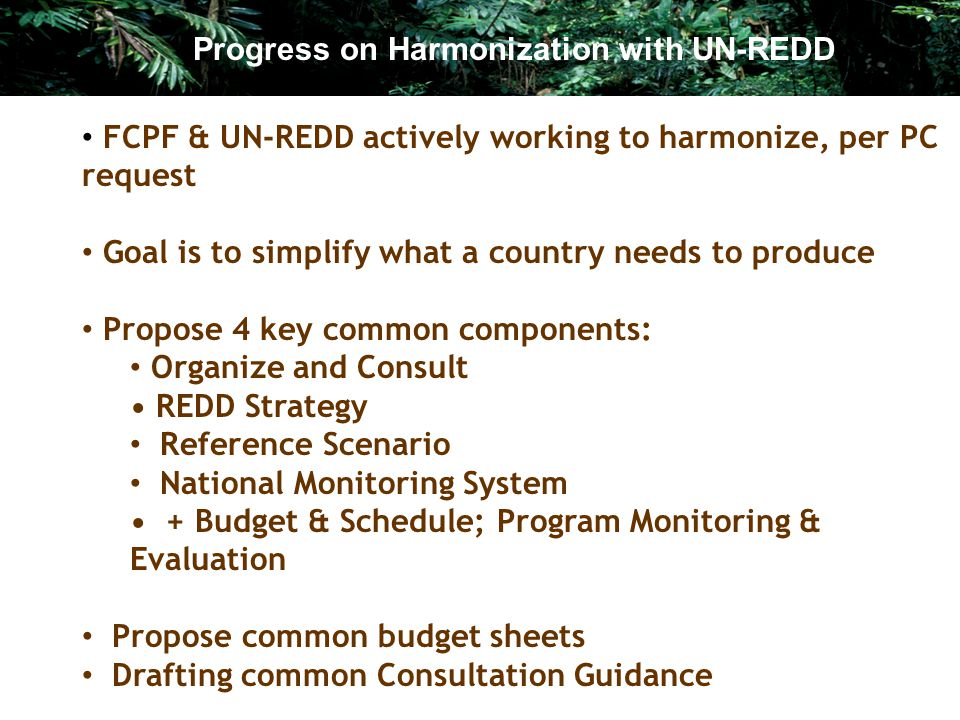 Progress on Harmonization with UN-REDD FCPF & UN-REDD actively working to harmonize, per PC request Goal is to simplify what a country needs to produce Propose 4 key common components: Organize and Consult REDD Strategy Reference Scenario National Monitoring System + Budget & Schedule; Program Monitoring & Evaluation Propose common budget sheets Drafting common Consultation Guidance